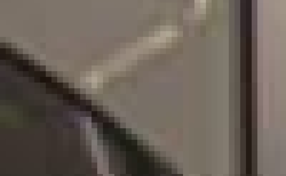 Sunglass Cove at Cowichan Eyecare
